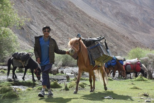 local horses transport gear as the expedition members hike up river and acclimate before climbing and skiing